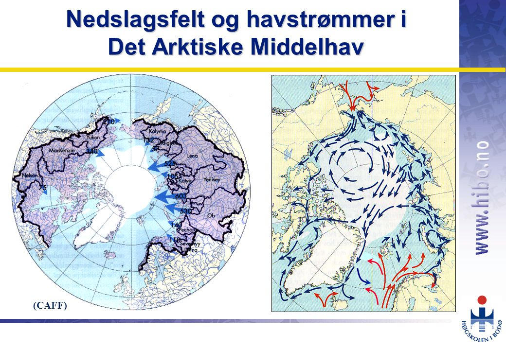 Nedslagsfelt og havstrømmer i Det Arktiske Middelhav