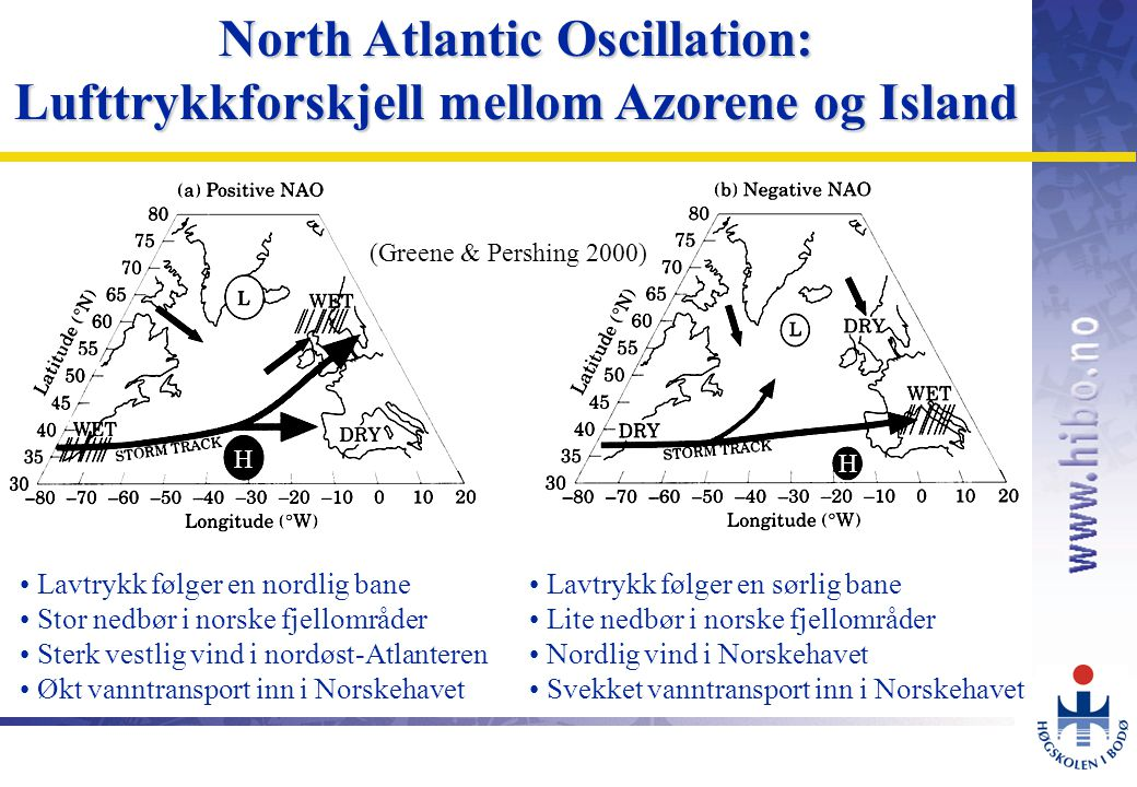 North Atlantic Oscillation: