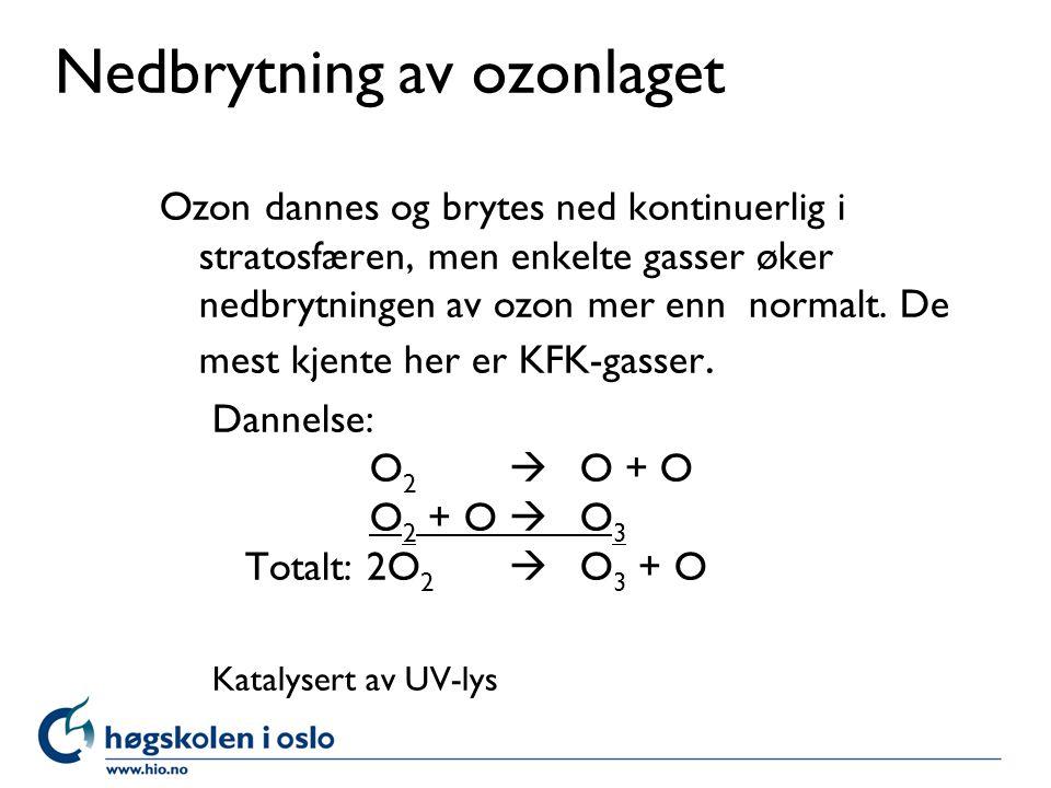 Nedbrytning av ozonlaget
