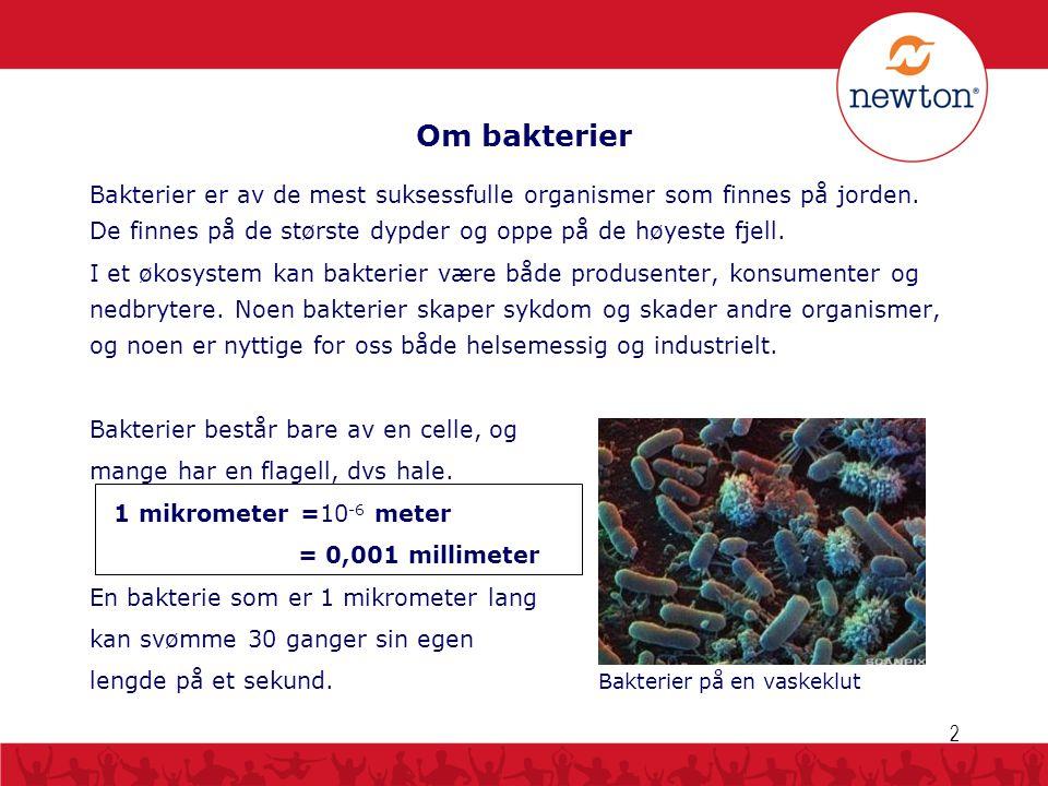 Om bakterier