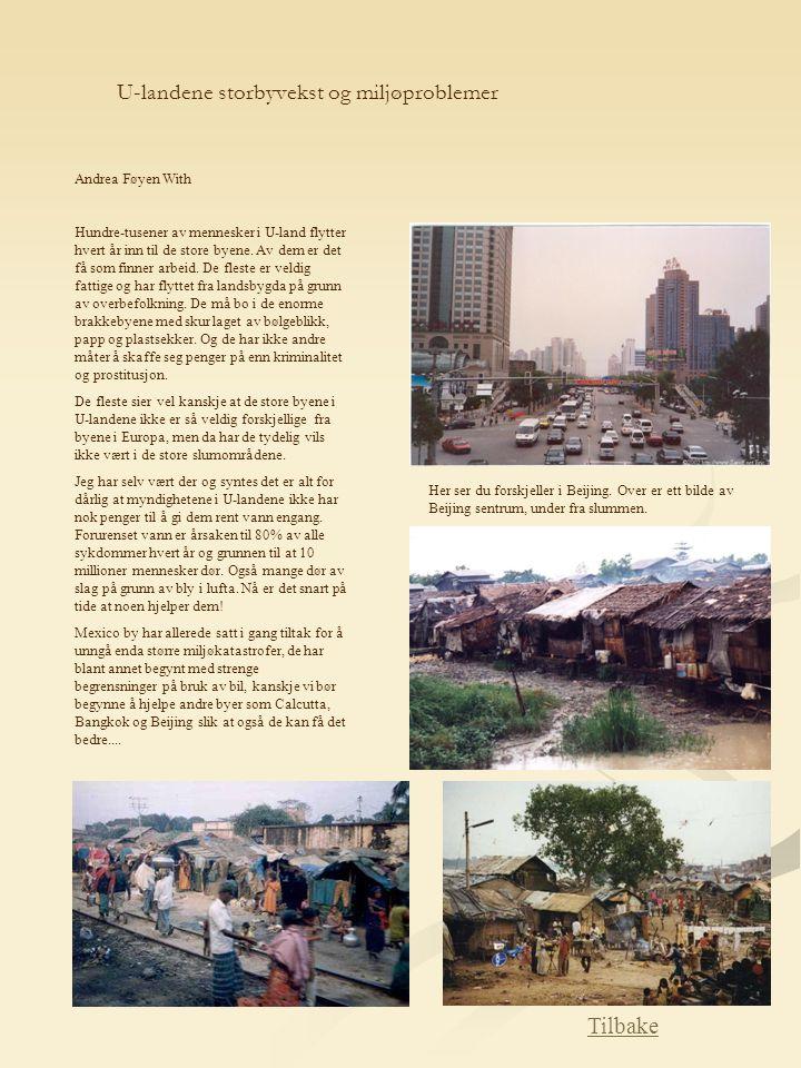 U-landene storbyvekst og miljøproblemer