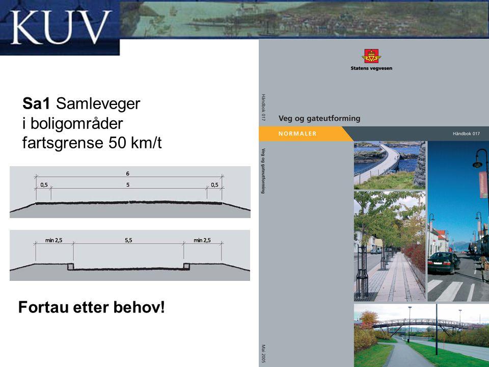 Sa1 Samleveger i boligområder fartsgrense 50 km/t Fortau etter behov!