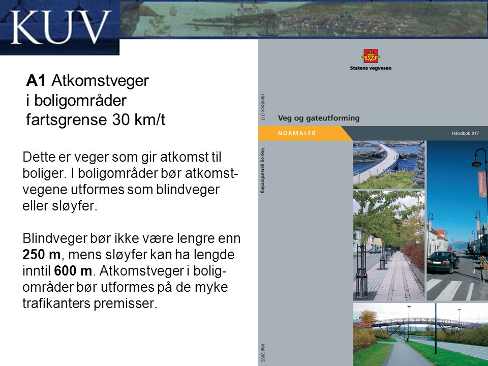 A1 Atkomstveger i boligområder fartsgrense 30 km/t