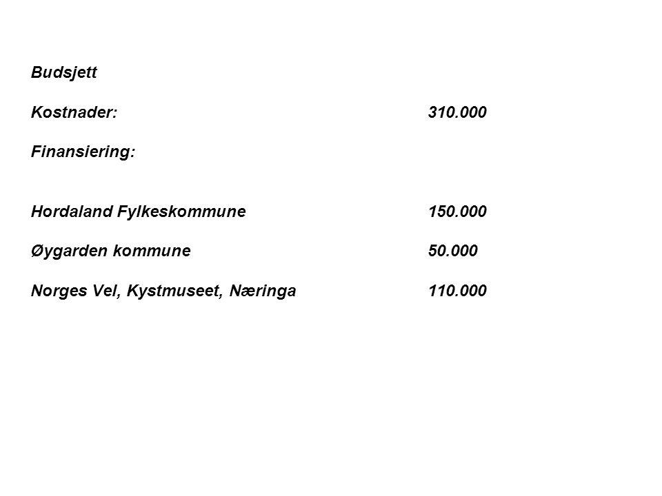 Budsjett Kostnader: 310.000. Finansiering: Hordaland Fylkeskommune 150.000. Øygarden kommune 50.000.