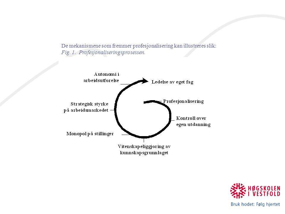 De mekanismene som fremmer profesjonalisering kan illustreres slik: