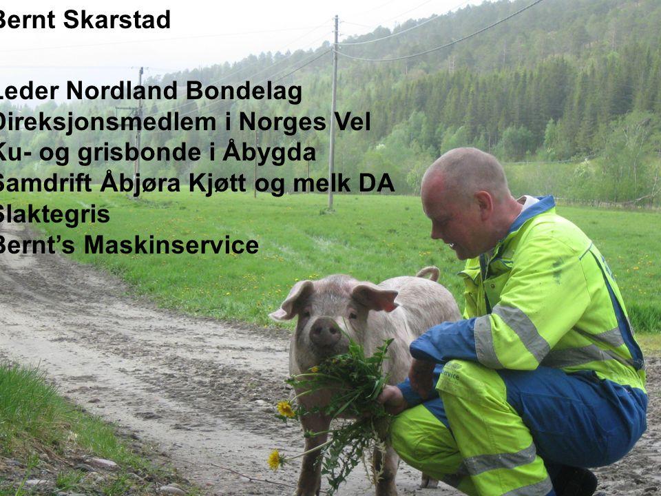 Leder Nordland Bondelag Direksjonsmedlem i Norges Vel