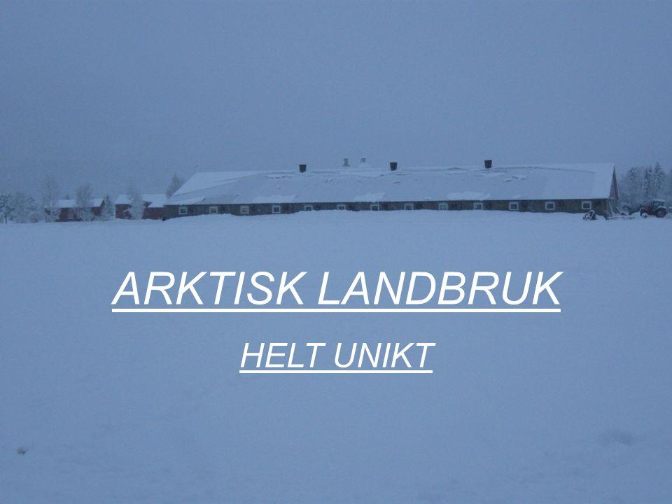 ARKTISK LANDBRUK HELT UNIKT Bernt Skarstad Arktisk landbruk