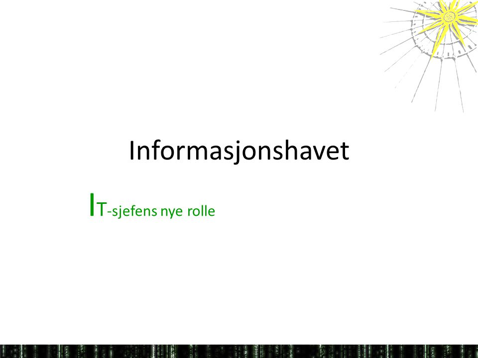 Informasjonshavet IT-sjefens nye rolle