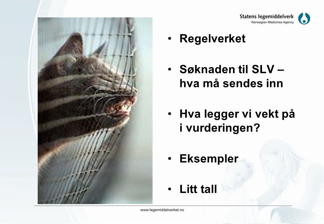 Regelverket Søknaden til SLV – hva må sendes inn. Hva legger vi vekt på i vurderingen Eksempler.