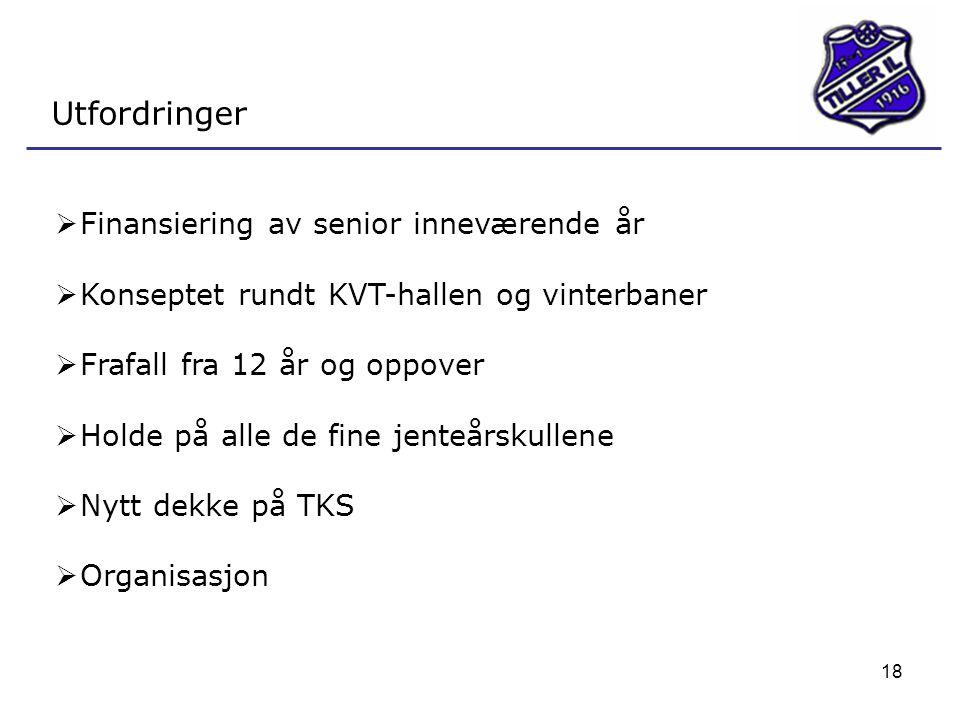 Utfordringer Finansiering av senior inneværende år