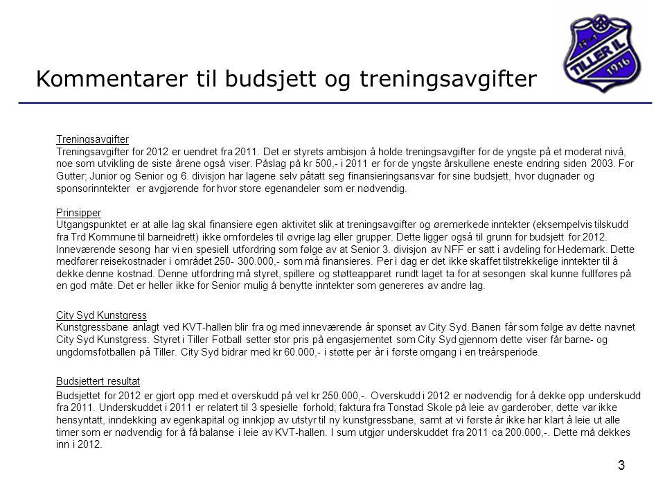 Kommentarer til budsjett og treningsavgifter