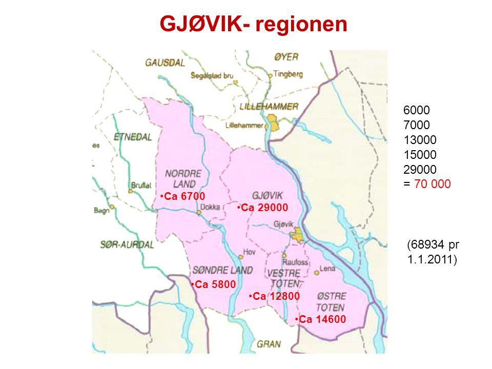 Presentasjon for kommunestyret 20.06.06