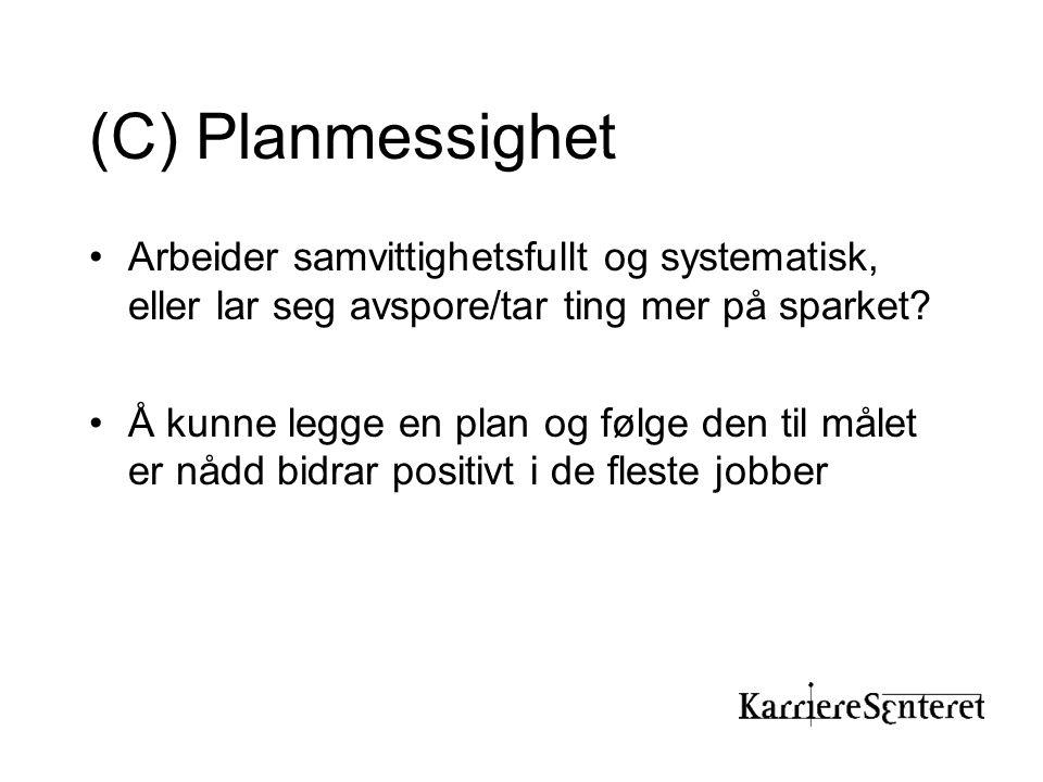 (C) Planmessighet Arbeider samvittighetsfullt og systematisk, eller lar seg avspore/tar ting mer på sparket
