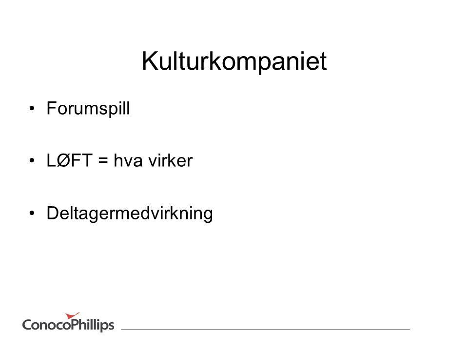 Kulturkompaniet Forumspill LØFT = hva virker Deltagermedvirkning