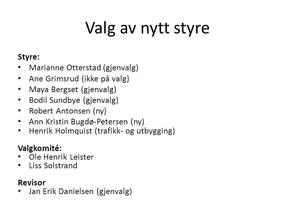 Valg av nytt styre Styre: Marianne Otterstad (gjenvalg)