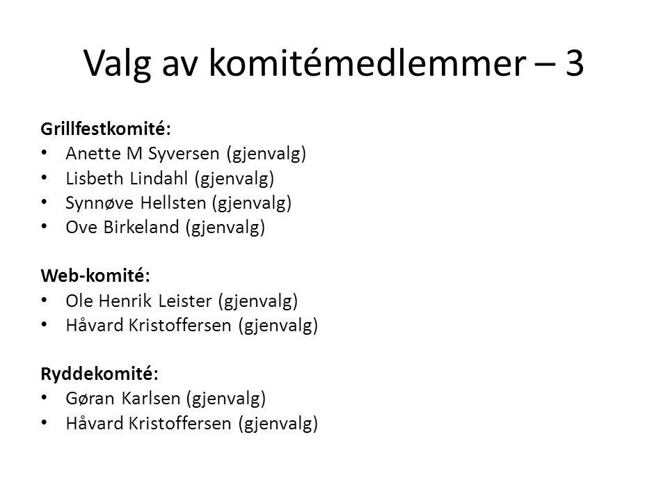 Valg av komitémedlemmer – 3