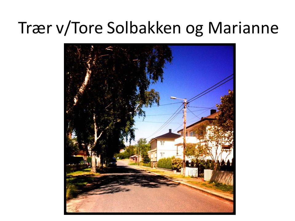 Trær v/Tore Solbakken og Marianne