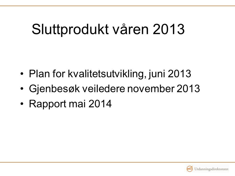 Sluttprodukt våren 2013 Plan for kvalitetsutvikling, juni 2013