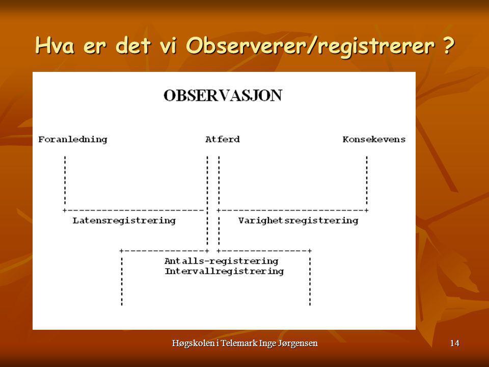 Hva er det vi Observerer/registrerer