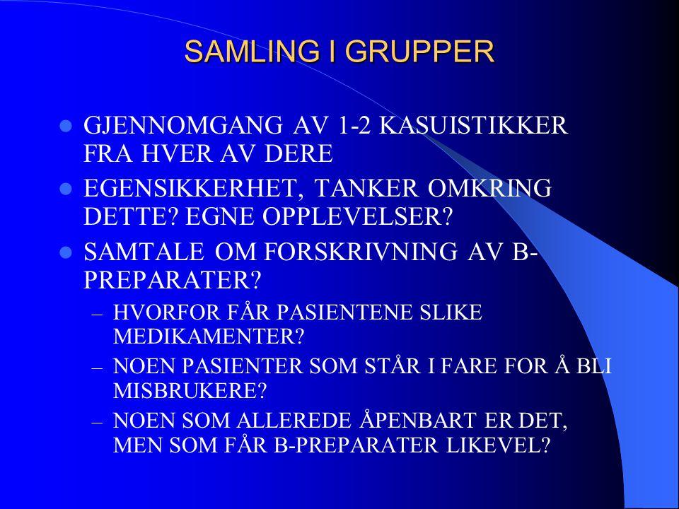 SAMLING I GRUPPER GJENNOMGANG AV 1-2 KASUISTIKKER FRA HVER AV DERE