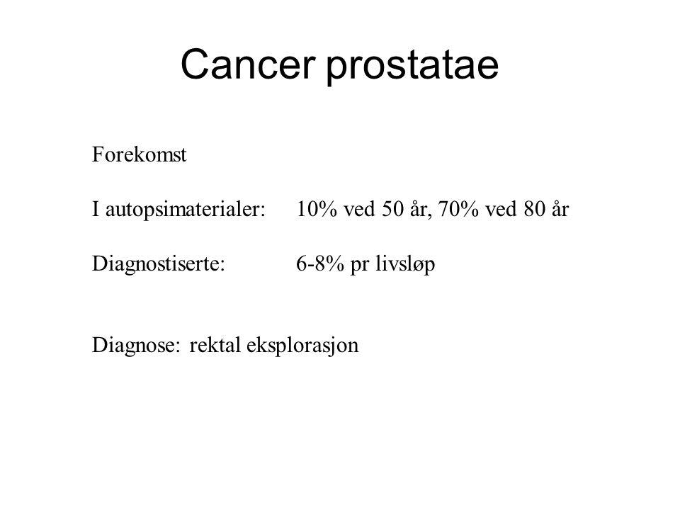 Cancer prostatae Forekomst