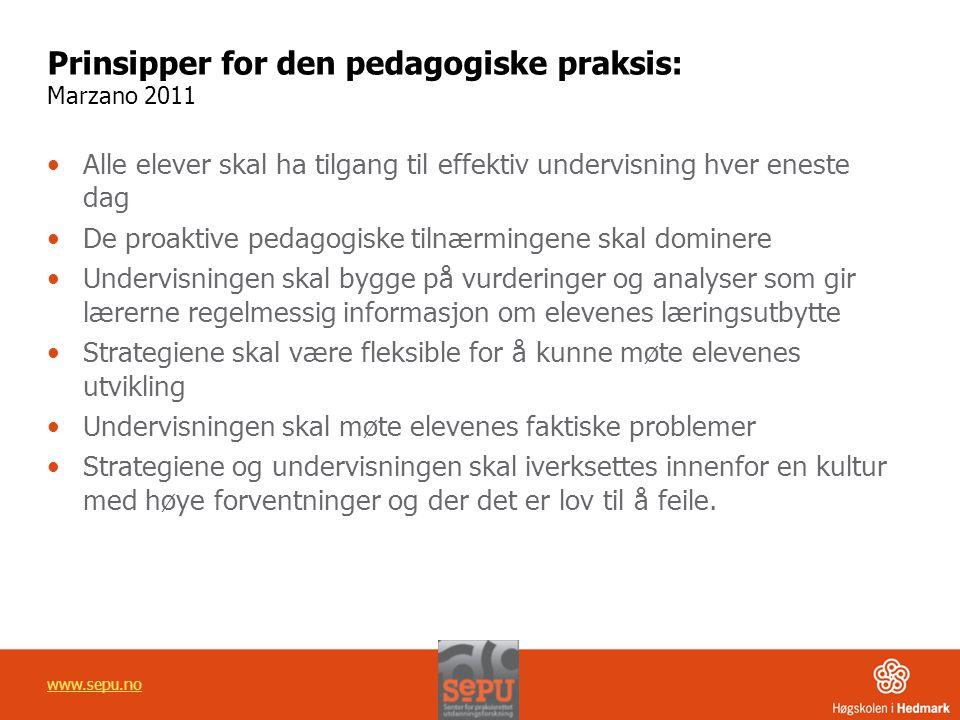 Prinsipper for den pedagogiske praksis: Marzano 2011