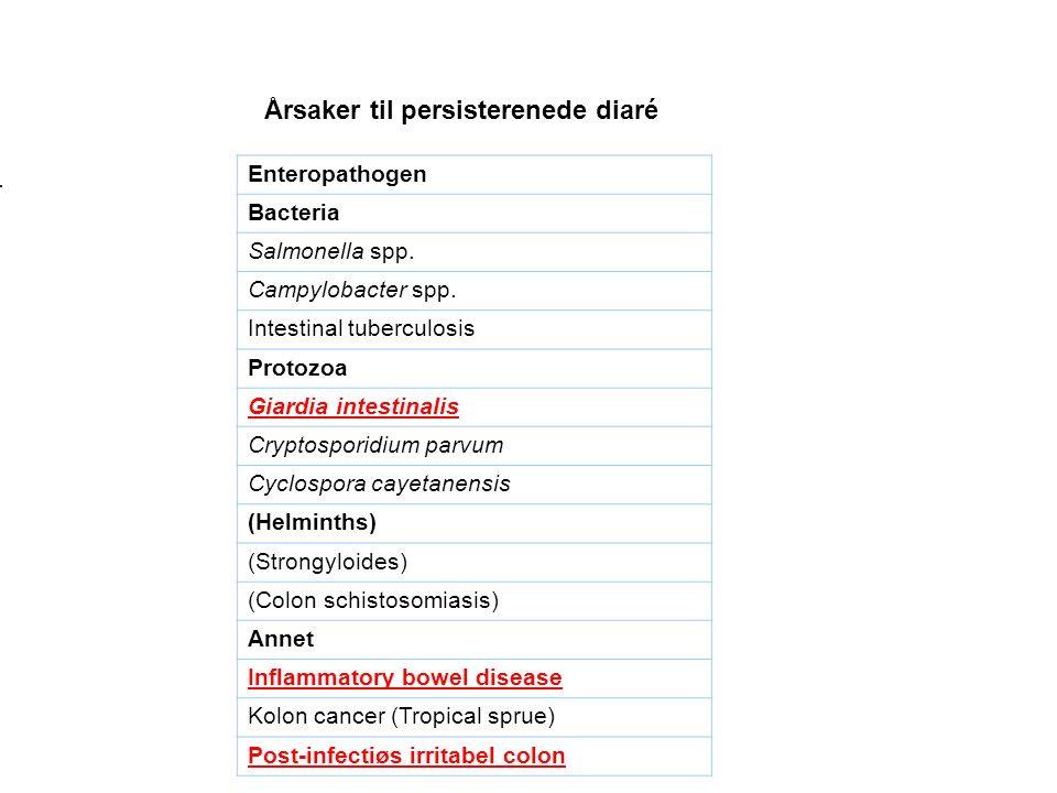 Årsaker til persisterenede diaré