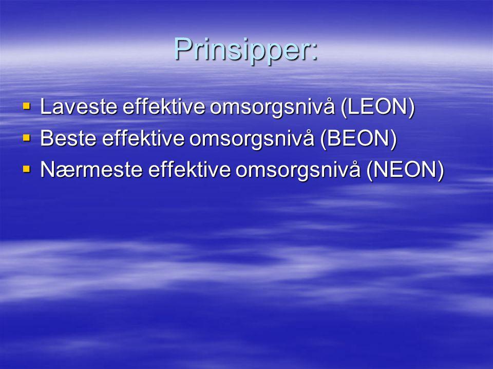 Prinsipper: Laveste effektive omsorgsnivå (LEON)