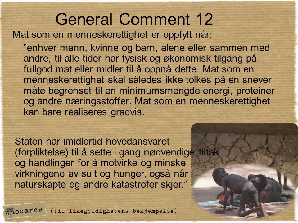 General Comment 12 Mat som en menneskerettighet er oppfylt når: