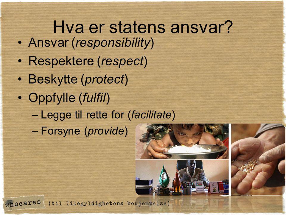 Hva er statens ansvar Ansvar (responsibility) Respektere (respect)