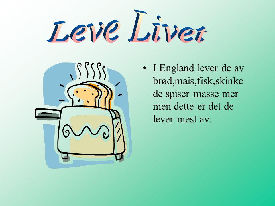 Leve Livet I England lever de av brød,mais,fisk,skinke de spiser masse mer men dette er det de lever mest av.