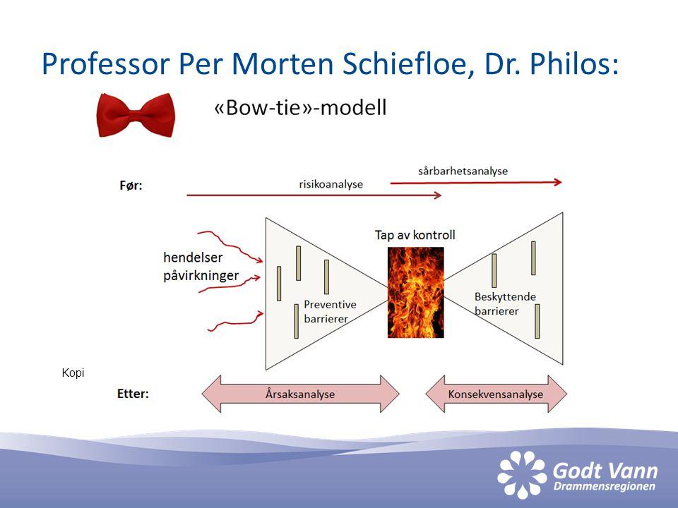 Professor Per Morten Schiefloe, Dr. Philos: