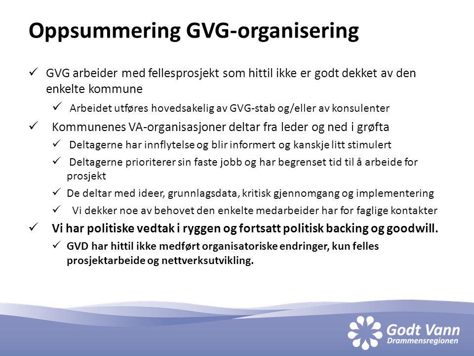 Oppsummering GVG-organisering