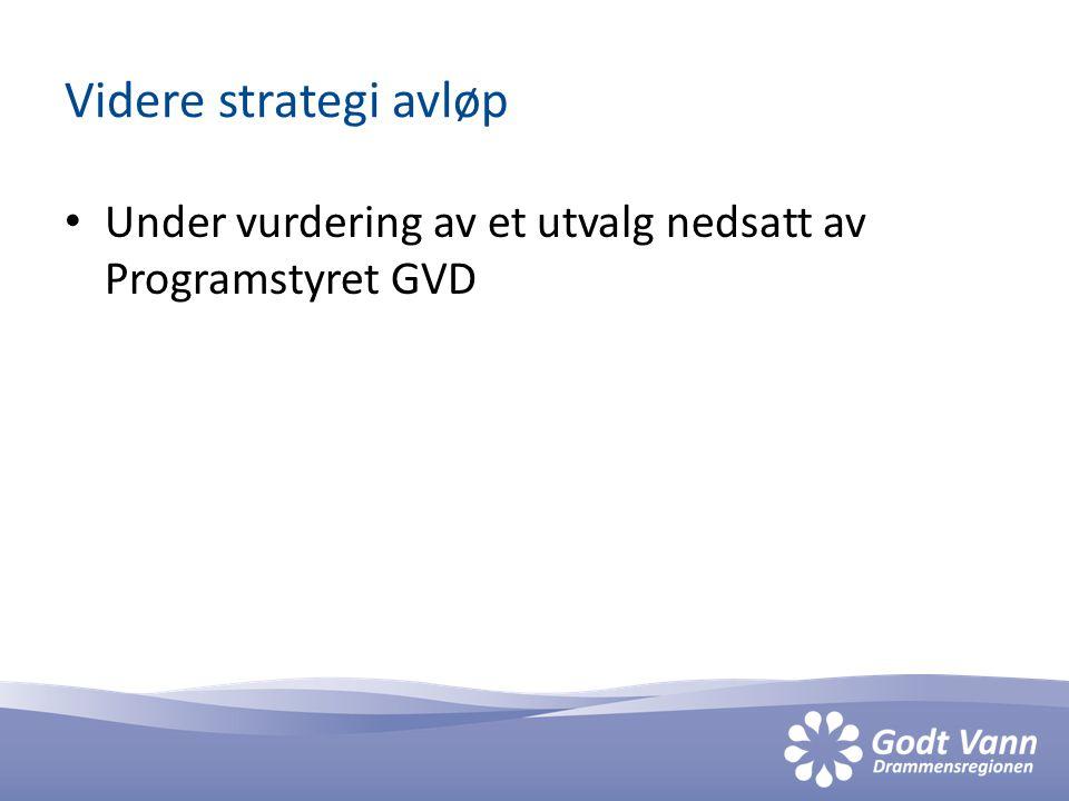 Videre strategi avløp Under vurdering av et utvalg nedsatt av Programstyret GVD