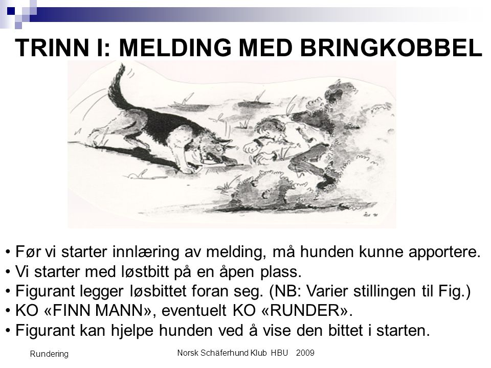 Norsk Schäferhund Klub HBU 2009
