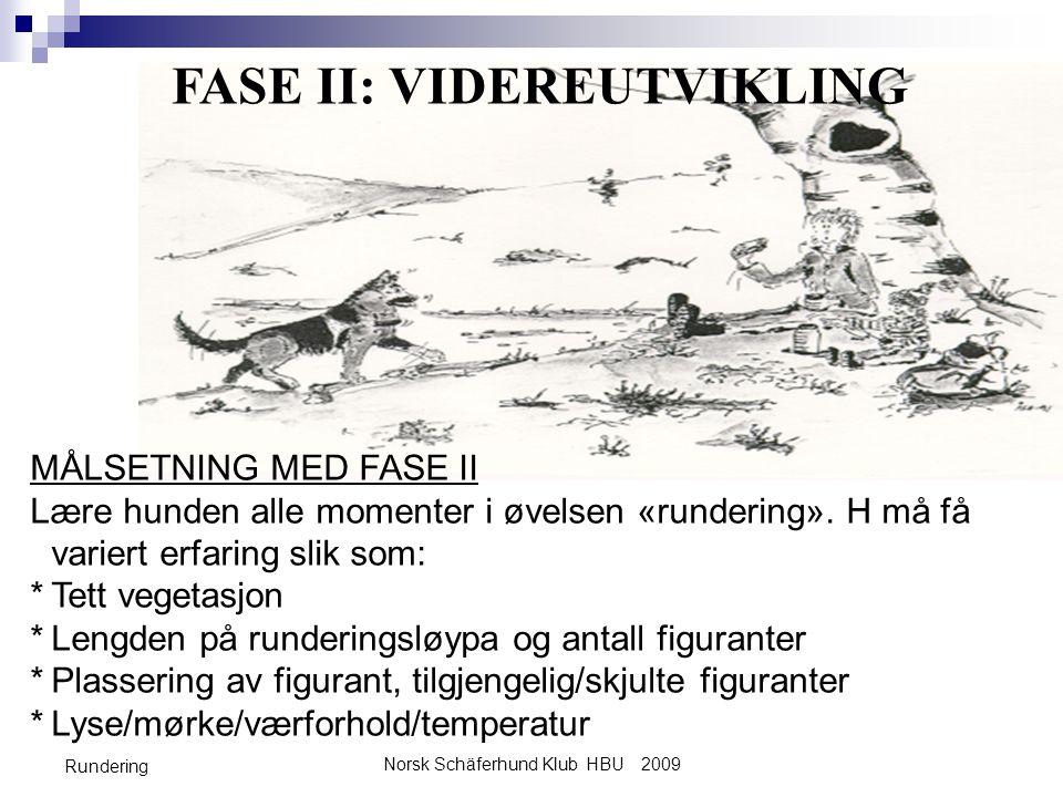 FASE II: VIDEREUTVIKLING