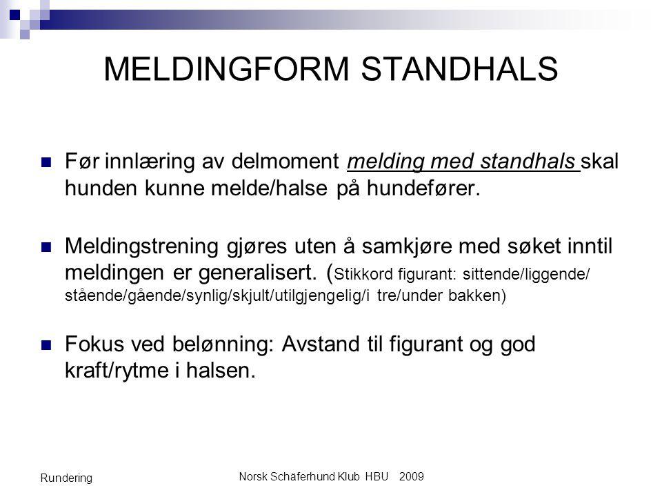MELDINGFORM STANDHALS