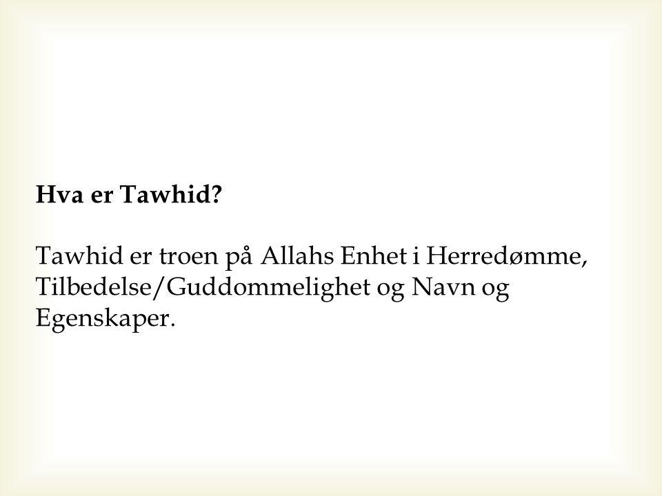 Hva er Tawhid.