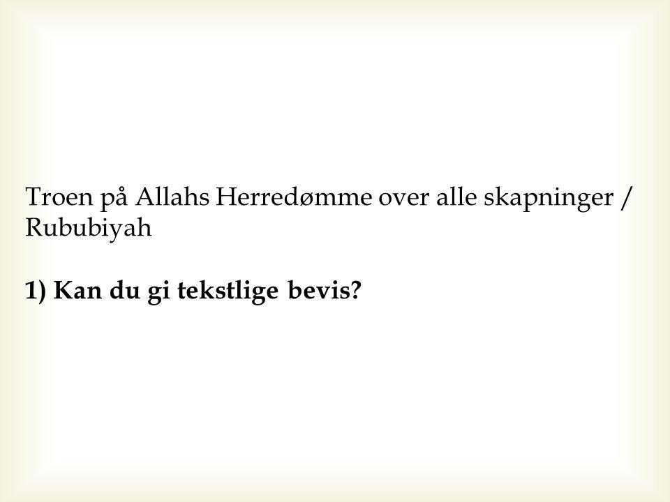 Troen på Allahs Herredømme over alle skapninger / Rububiyah