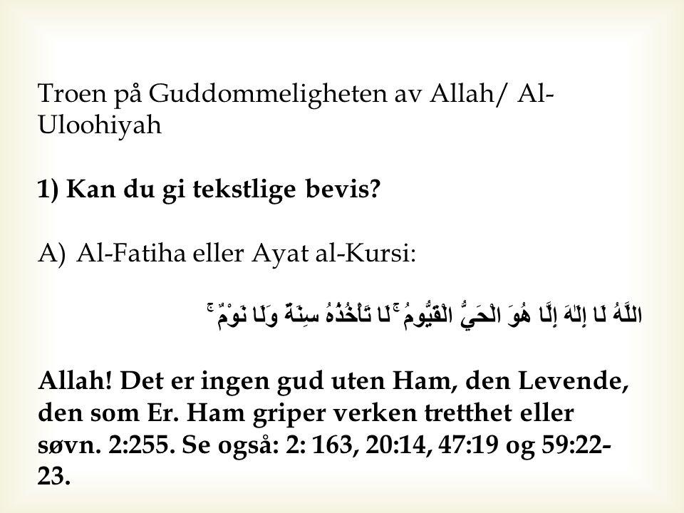 Troen på Guddommeligheten av Allah/ Al-Uloohiyah