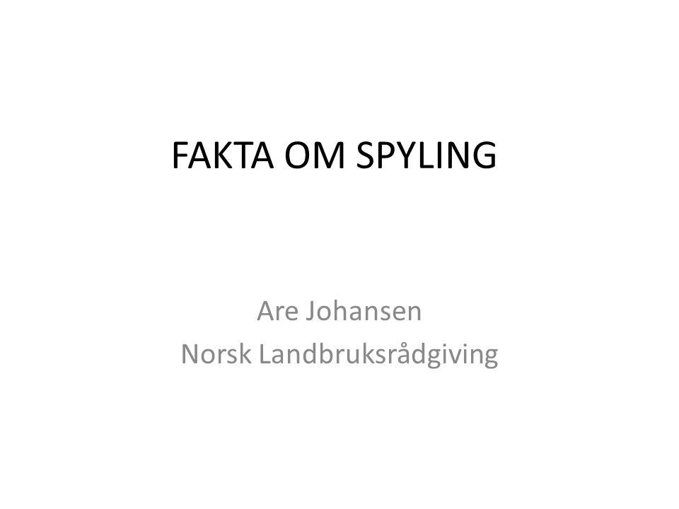 Are Johansen Norsk Landbruksrådgiving