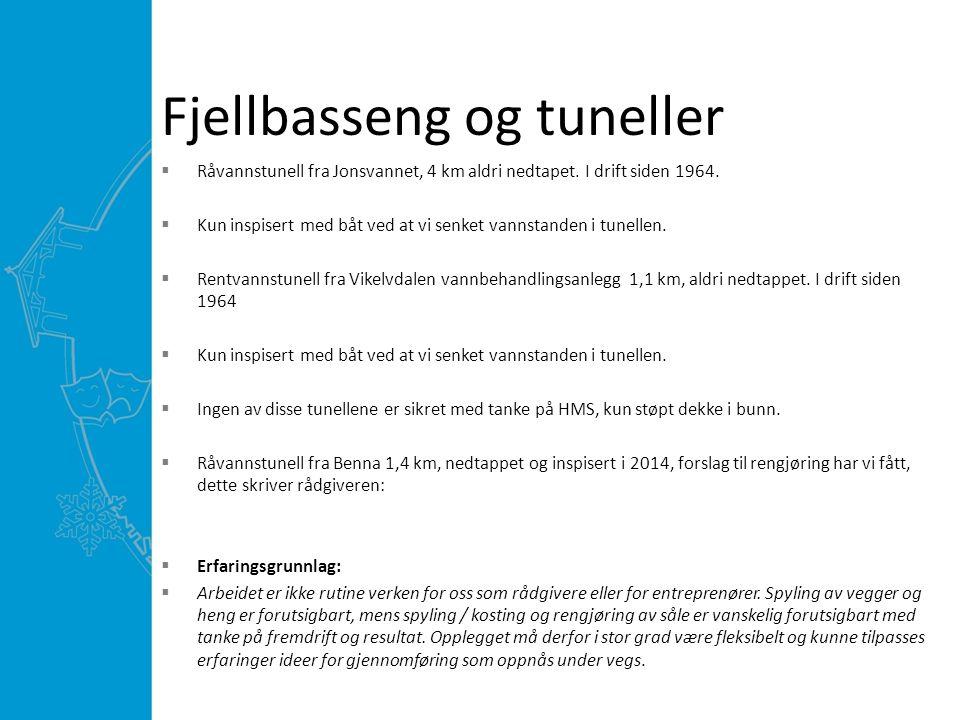 Fjellbasseng og tuneller