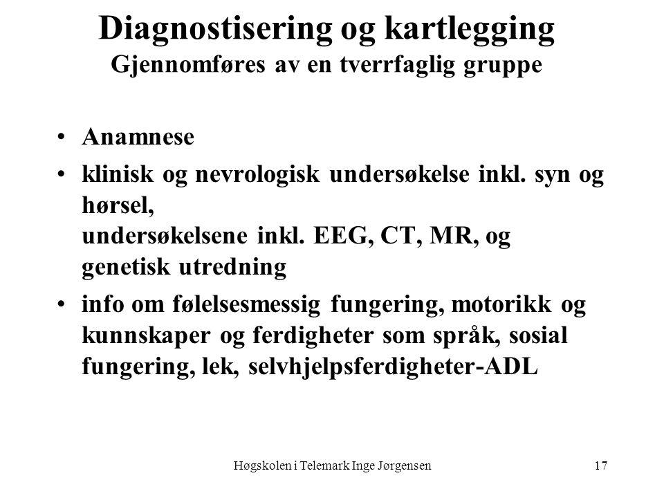 Diagnostisering og kartlegging Gjennomføres av en tverrfaglig gruppe