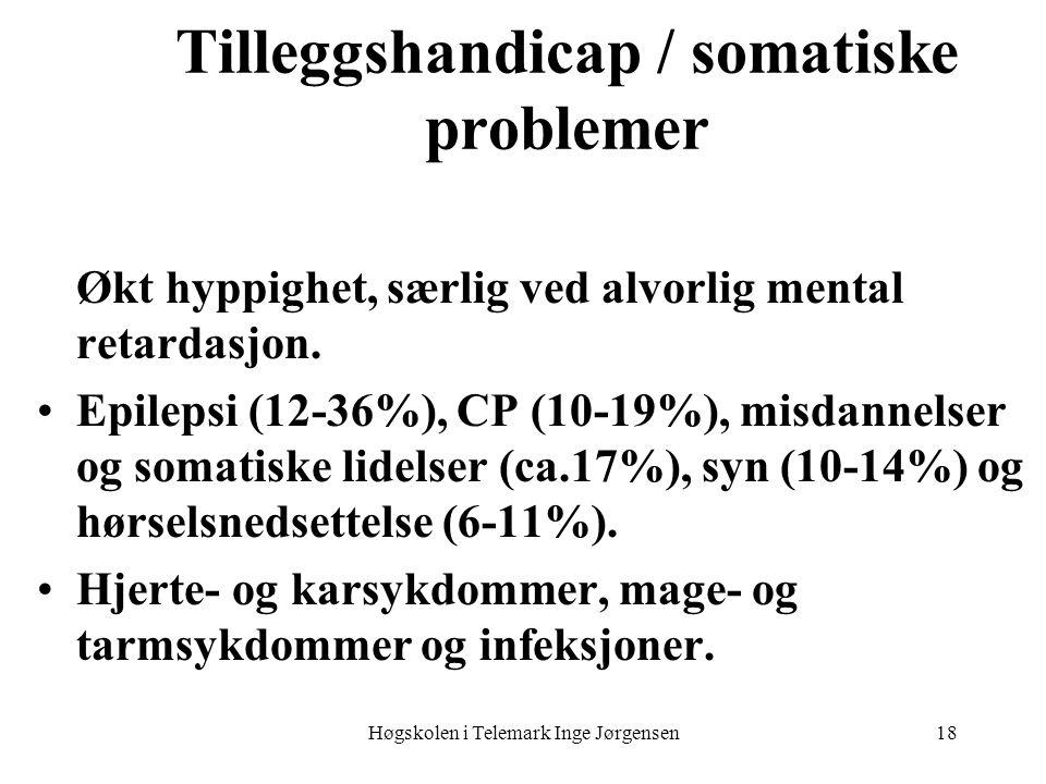 Tilleggshandicap / somatiske problemer