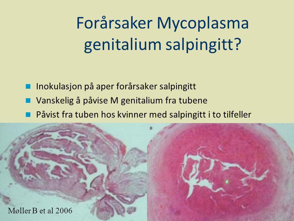 Forårsaker Mycoplasma genitalium salpingitt