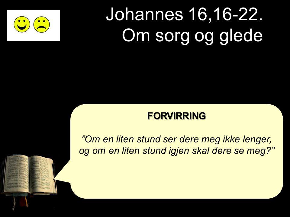 Johannes 16,16-22. Om sorg og glede