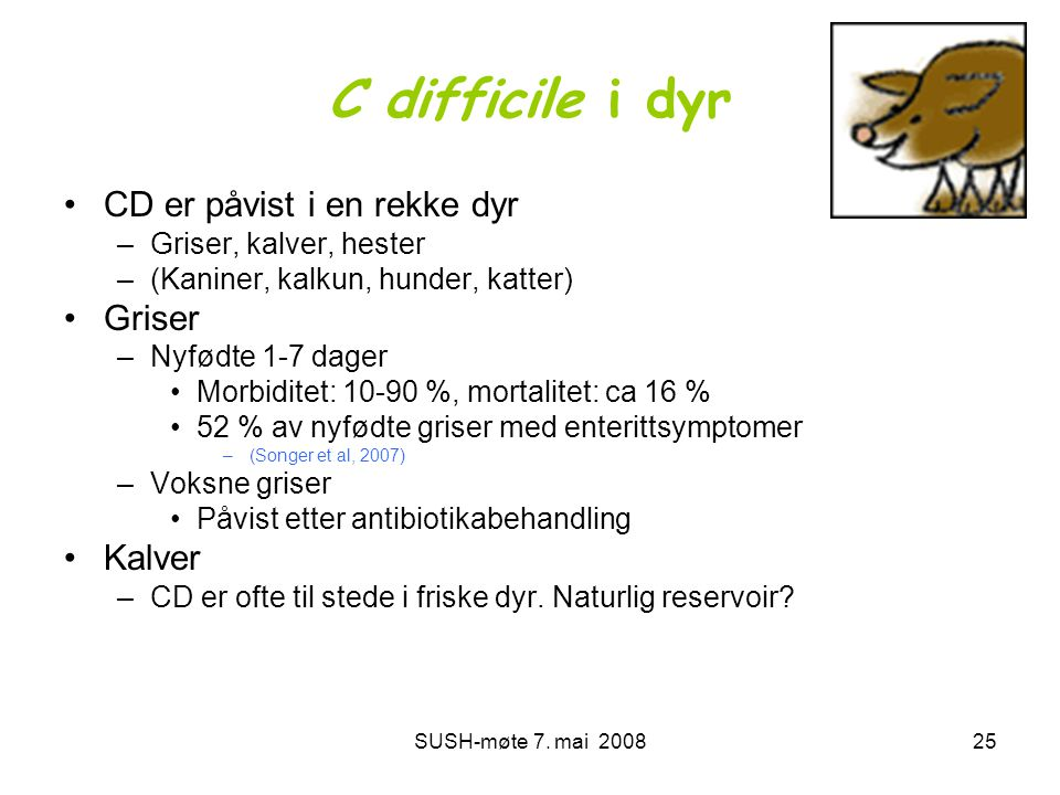 C difficile i dyr CD er påvist i en rekke dyr Griser Kalver