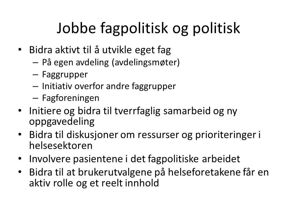 Jobbe fagpolitisk og politisk