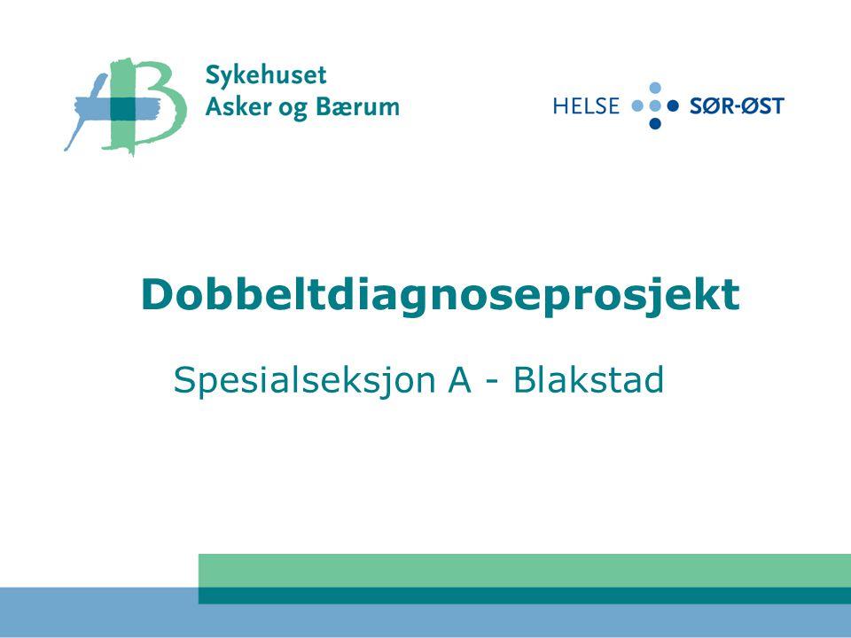 Dobbeltdiagnoseprosjekt