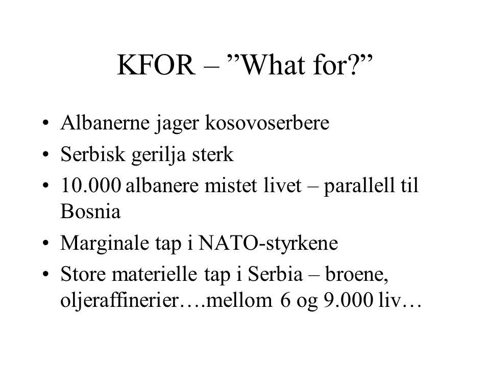 KFOR – What for Albanerne jager kosovoserbere Serbisk gerilja sterk